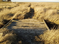 a-little-bridge-in-the-middle-of-nowhere-1234006