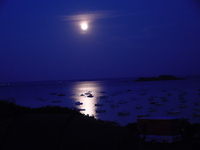 full-moon-port-1469323