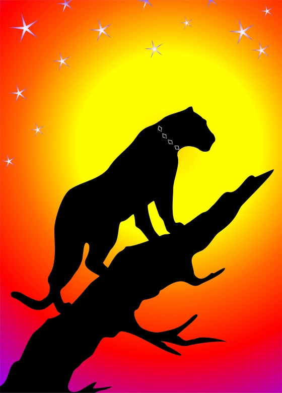 panther-1516010_1920 (1)